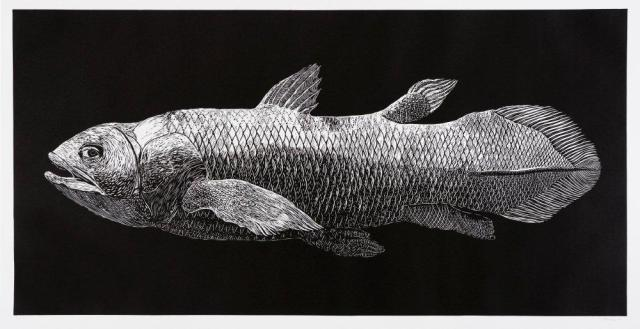 Walter Oltmann, Coelacanth, 2010, Linocut, 180 x 85 cm. Collection: Standard Bank Corporate Collection.